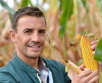How Corn Affects Human Civilization?