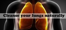 Foods For Clean Your Lungs