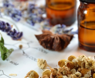 7 Essential Oils To Extract A Divine Aroma