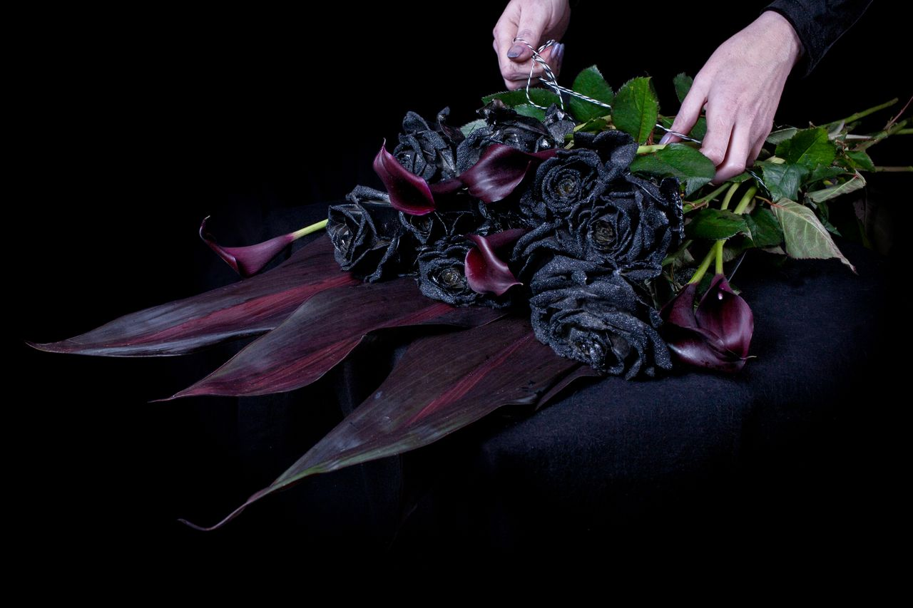 Top most seven black and elegant beauty of flowers izmirmasajfo