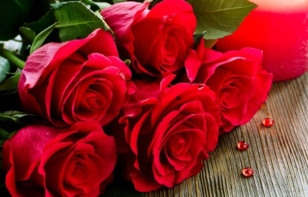 Why Are Roses Considered Best To Express Their Love? Learn Their Significance Before Gifting Them On This Rose Day