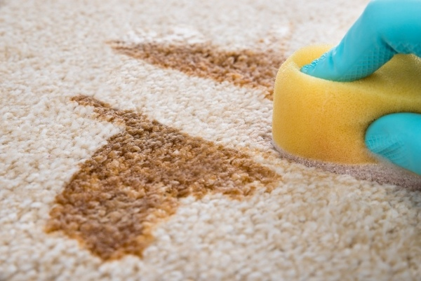 Stain Removal Tips For Your Carpet