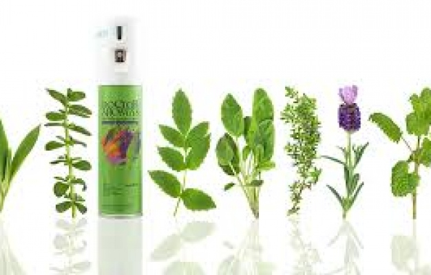 How Aromatherapy Is Transforming Hotel Room Stay