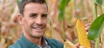 How Corn Affects Human Civilization?