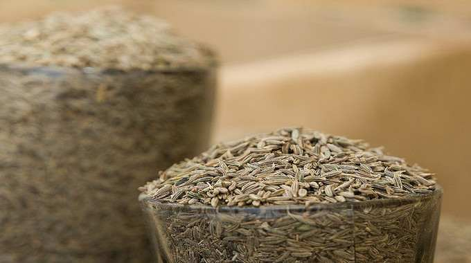 7 Reasons For Using Cumin Seeds For Your Health