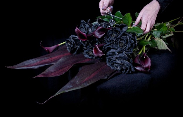 Top Most 7 Black and Elegant Beauty Of Flowers
