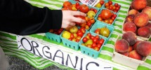 4 Tips To Follow A Nourishing Organic Diet Without Going Broke