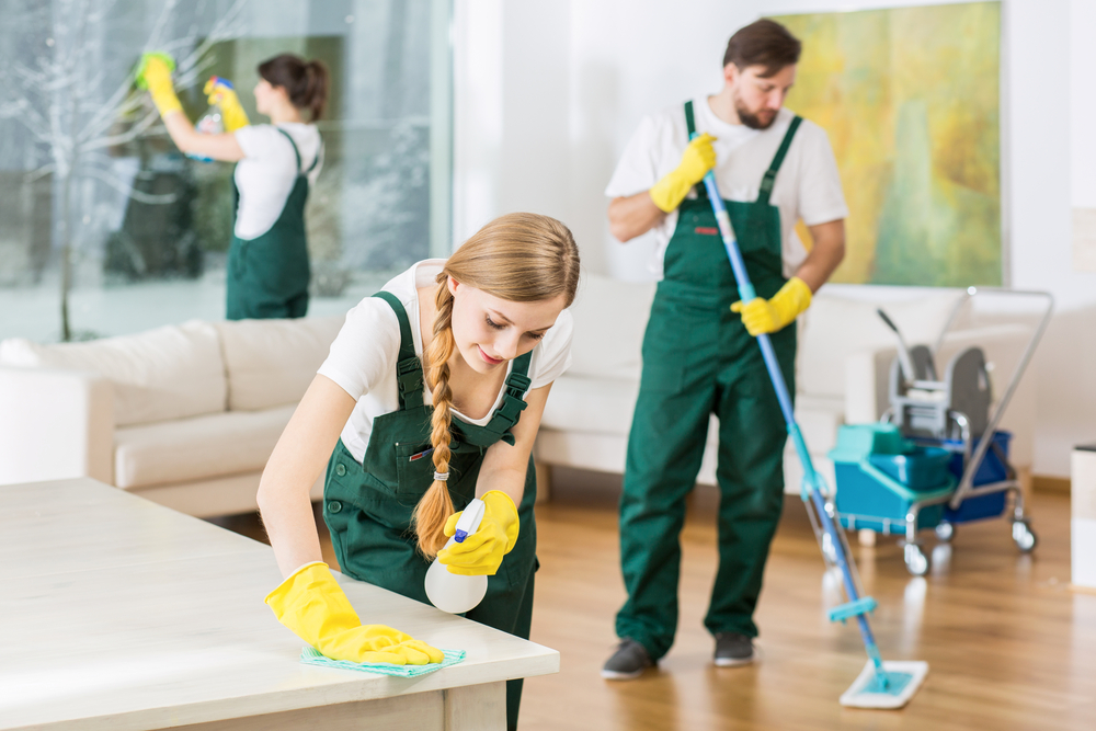 Choose The Best Insurance Cover For Cleaning Services