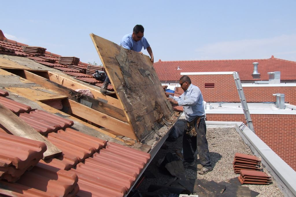 Things To Know About Roof Repairs Ascot