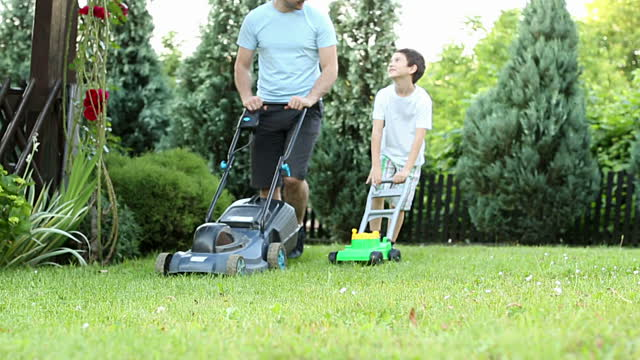 Doing A Backyard Clean Up? Use These Expert Hacks To Clean Up Real Fast