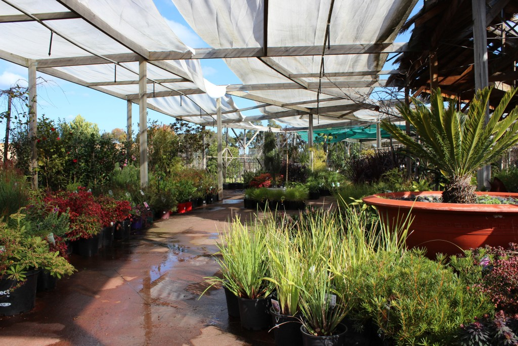 4 Smart Tips To Stumble Upon The Right Garden Centre Near You