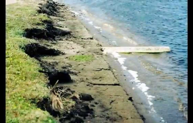 Shoreline erosion control